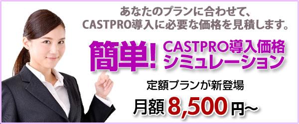 CASTPRO5 価格シミュレーション